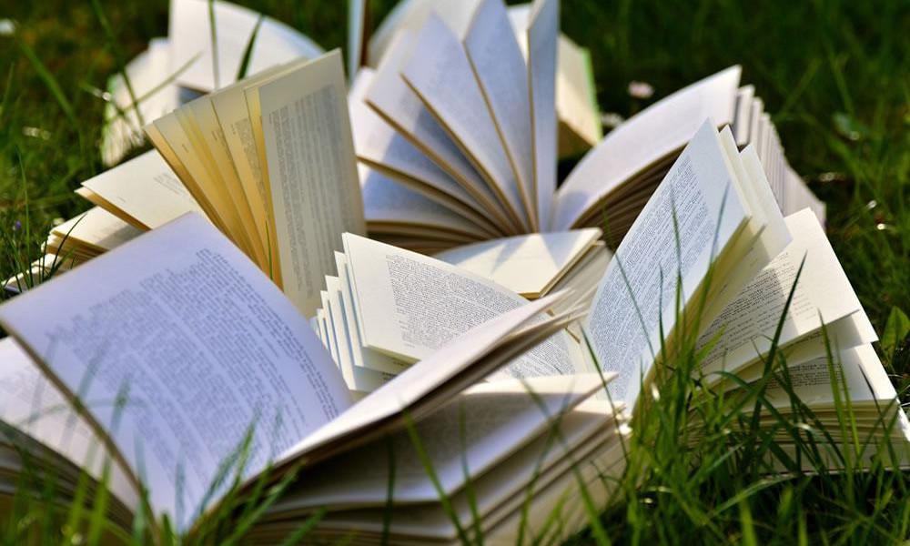 Pós-Graduação em Linguística e Literatura